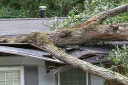 Storm Damage Roof Repair In Raleigh NC